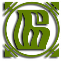 logo_borisovdrev